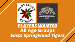 PLAYERS WANTED - All Age Groups - Easts Springwood Tigers