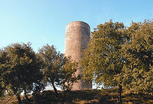 Torre de la Manresana.jpg