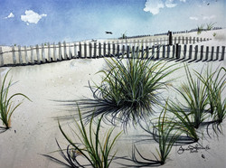 Wakeena Sand Dunes