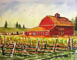 Red Barn Vineyard
