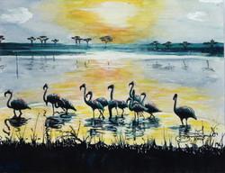 Flamingos of the Serengeti