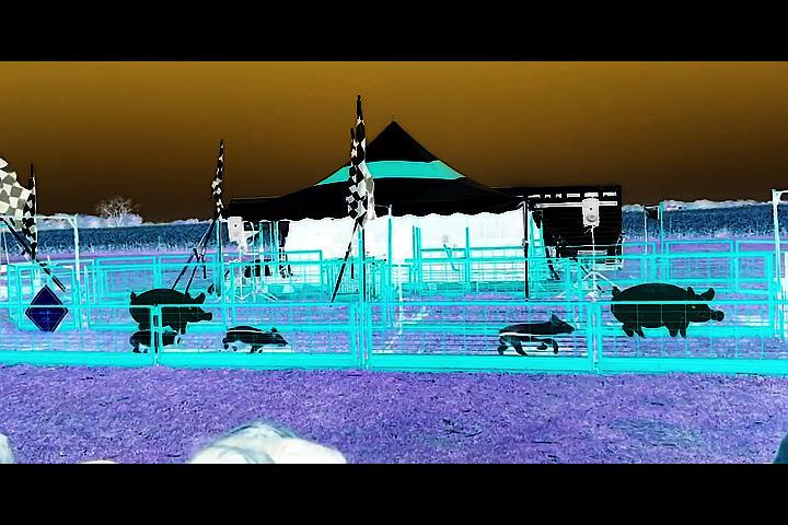 Sequence 04.00_06_57_23.Still001