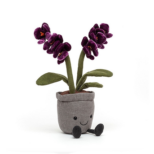Amuseable Purple Orchid