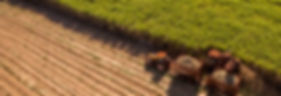 fazenda2.jpg