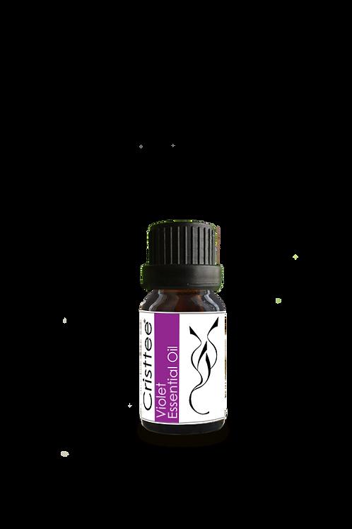 Violet Essential Oil