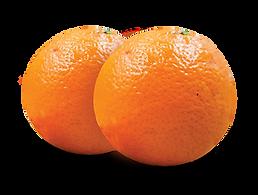 MandarinFINAL.png