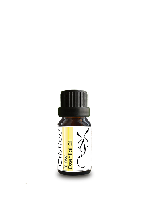 Tansy Essential Oil