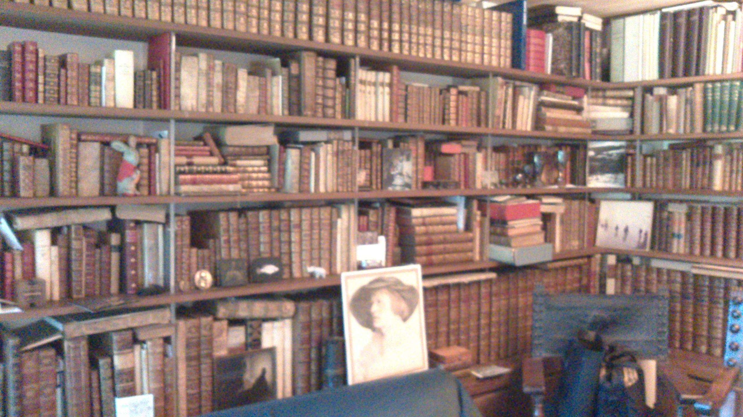 Wenge bookcase