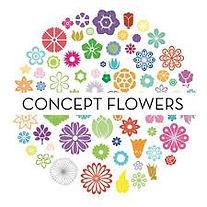 concept flowers.jpg