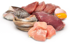 proteini u lchf ishrani