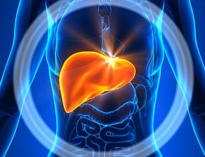 Masnom hranom protiv masne jetre (da, dobro ste pročitali)
