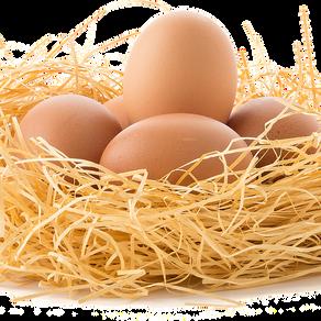 Top 10 zdravstvenih prednosti konzumiranja jaja