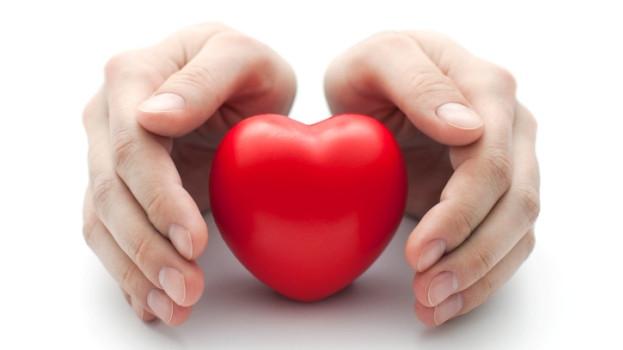 lchf cuva srce