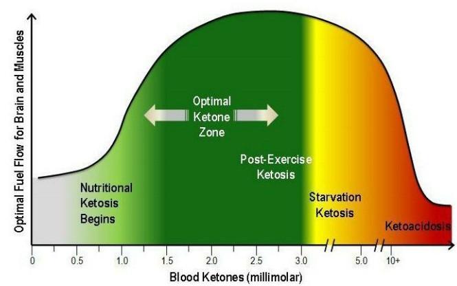 ketoza i ketoacidoza