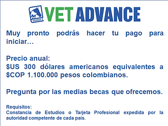 vetadvance2.png