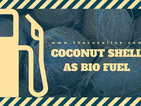 Coconut Shell as Biofuel