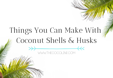 Things You Can Make With Coconut Shells and Husks