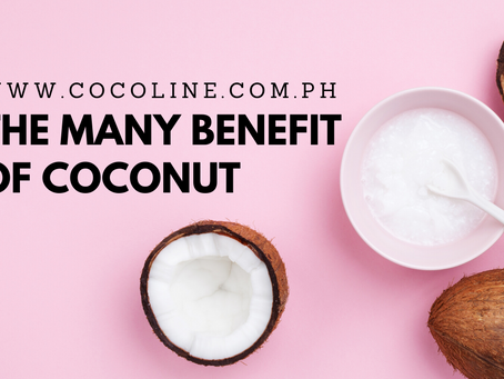 The Many Benefits of Coconut