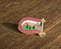 Commemorative Pin