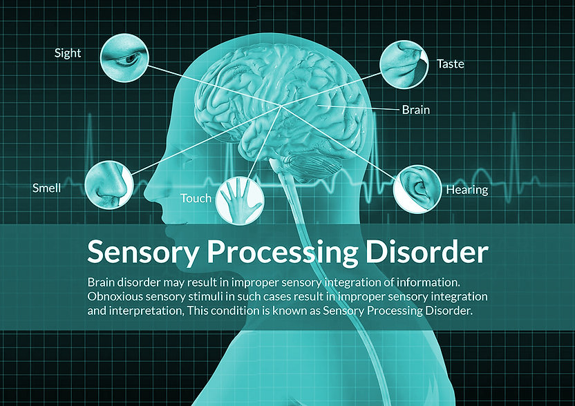 Sensory Processing Disorder at Action Kids Therapy