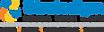 STR Logo BFSI.png