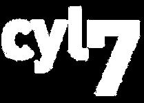 logo tv castilla y leon.png