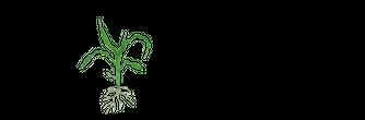 EZ Drops Logo.png