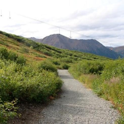Arctic Valley Trails Care @ Chugach Park 50-51 Fest