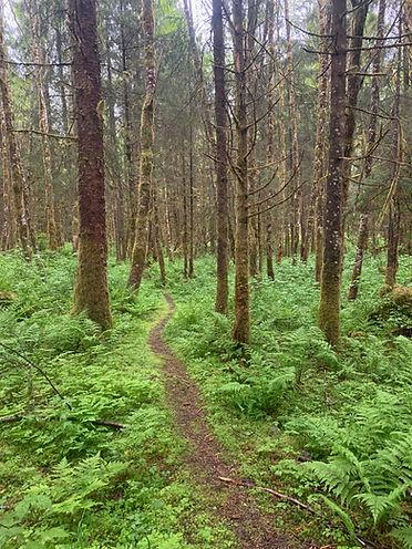POW Trail Photo1.jpeg