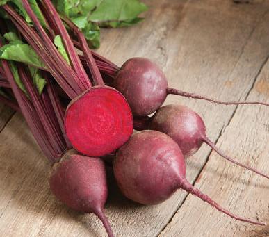 Healthy Seasonal Foods