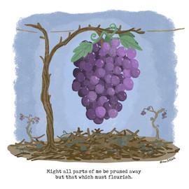 pruned-plant.jpg
