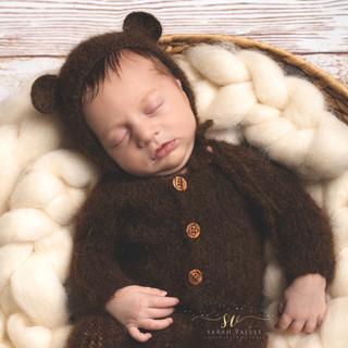 photographie nouveau né petit ourson
