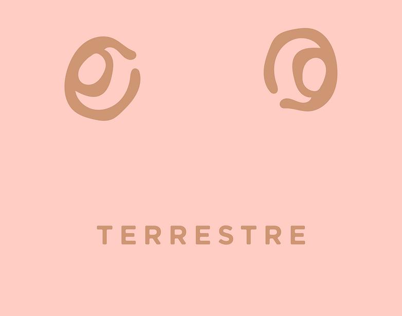 Terrestre_Logos-09_edited.png