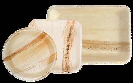 palm-leaf-plates.png