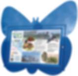 butterfly board angled.jpg