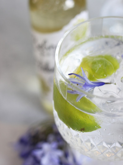 G&T Content Creation