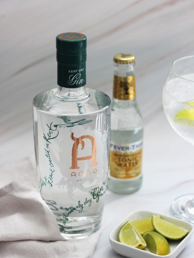 Anno Lime G&T Fever Tree - Credit Jess L