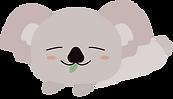 koala7.png