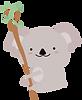koala4.png