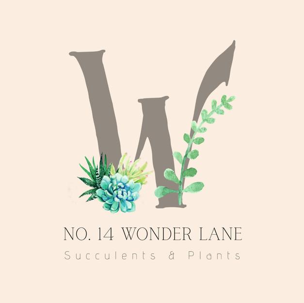No. 14 Wonder Lane