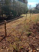 fence5.jpg