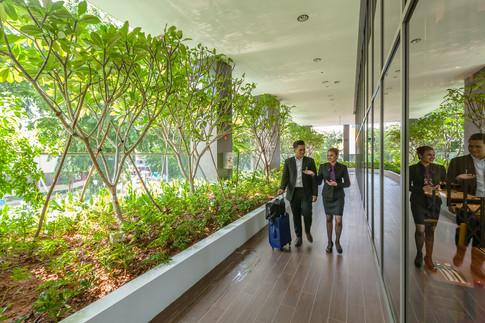 Premier Inn Singapore Beach Road Hotel Architectural Interior Photography by Siyuan Ma (Shiya Studio), reception, lobby