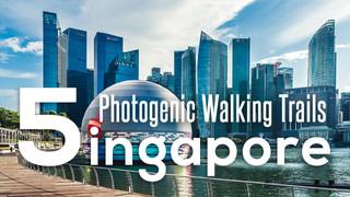 1-5 Photogenic Walking Trails