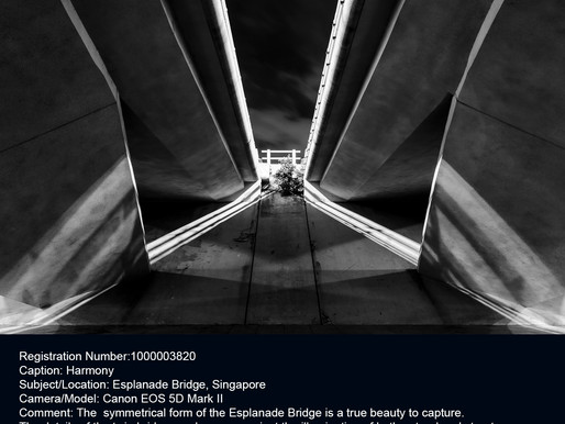 Second Place Winner at Triumph Architecture Photography Awards 2015