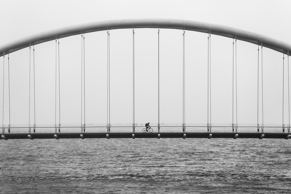 bicycle-bike-black-and-white-bridge-4107