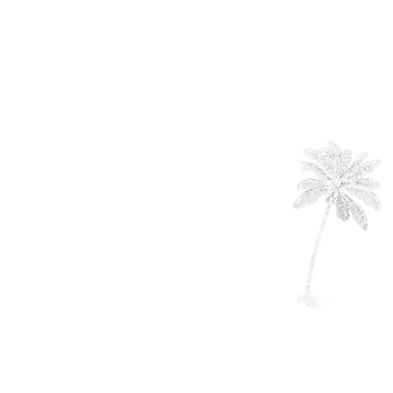 Bali Fitness Travel (1).png