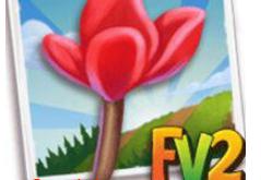 New Crop  Christmas Cyclamen     (Coming Soon)