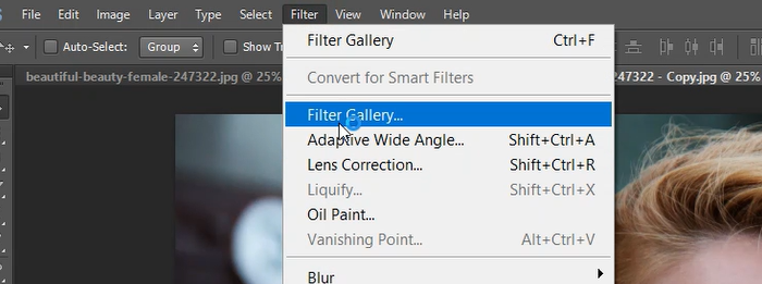 Filter gallery in Photoshop