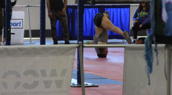 Fitness Expo (Chicago)