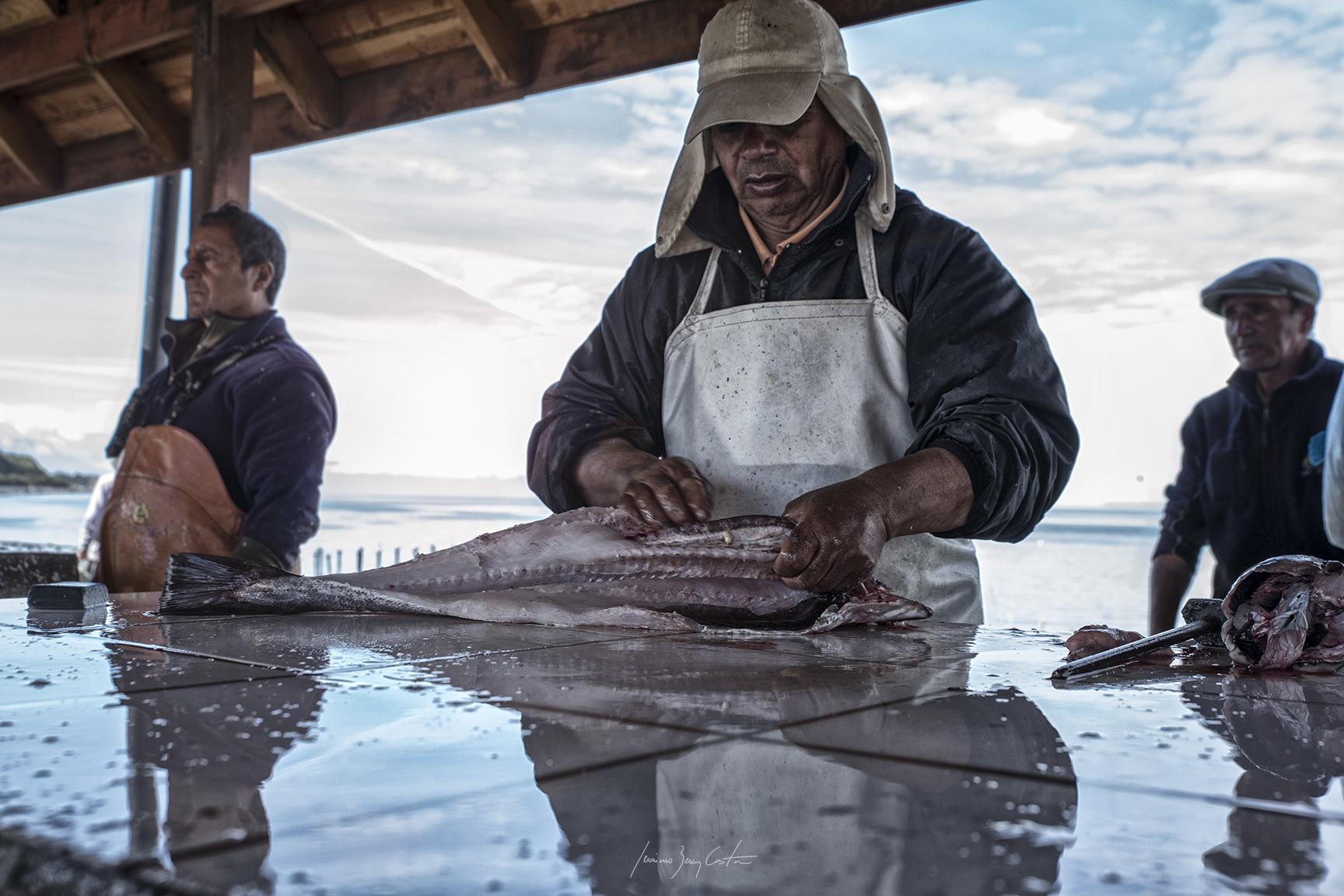 Vendedores de pescado